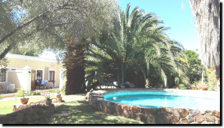 where to stay Prince Albert, Karoo , Swimmingpool